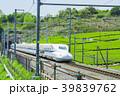 新緑の茶畑と新幹線 39839762