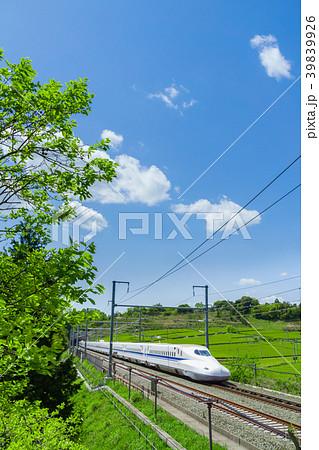 新緑の茶畑と新幹線 青空 39839926