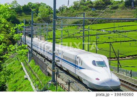 新緑の茶畑と新幹線 39840060