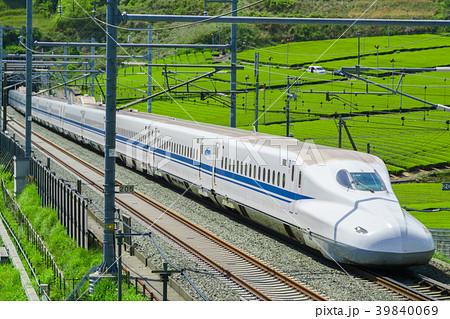 新緑の茶畑と新幹線 39840069