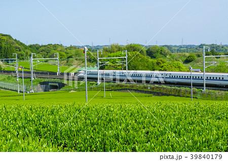 新緑の茶畑と新幹線 39840179
