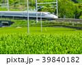 新緑の茶畑と新幹線 39840182