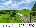 新緑の茶畑と新幹線 青空 39841592