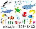 南国の海洋生物 39848482