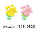 チューリップ 花 ベクターのイラスト 39849325