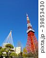 東京タワー タワー 雪吊りの写真 39853430