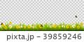 フラワー 花 景色のイラスト 39859246