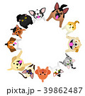 座って見上げる犬と猫のサークル 39862487