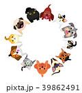 座って見上げる小型犬と猫のサークル 39862491