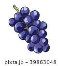 ぶどう グレープ フルーツのイラスト 39863048