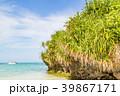 沖縄 石垣島 川平湾の写真 39867171