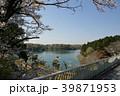 多摩湖橋から見る多摩湖 39871953
