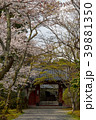 常照寺と桜 39881350