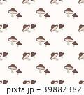 ヤマドリタケ きのこ キノコのイラスト 39882382