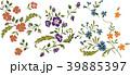 野の花 39885397