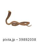 動物 コブラ ヘビのイラスト 39892038