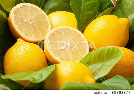 レモン 39892377