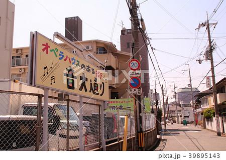 大阪音楽大学音大通り 39895143