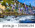 杖立温泉の鯉のぼり 【熊本県阿蘇郡小国町】 39896194