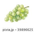 葡萄 シャインマスカット マスカットのイラスト 39896625