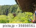長谷寺 新緑 寺院の写真 39898561