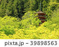 長谷寺 新緑 初夏の写真 39898563
