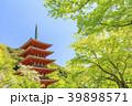 長谷寺 新緑 寺院の写真 39898571