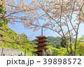 長谷寺 新緑 五重塔の写真 39898572