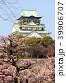 大阪城と梅林 39906707