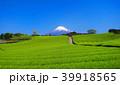 富士市今宮の新緑の茶畑と青空の富士山 2018/04/20 39918565