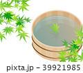 新緑(若葉) 39921985