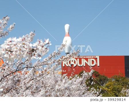 薄桃色の綺麗な花が咲いたソメイヨシノの先にボーリング場の広告 39929814