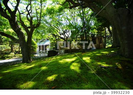 鎌倉 旧華頂宮邸 邸園 39932230
