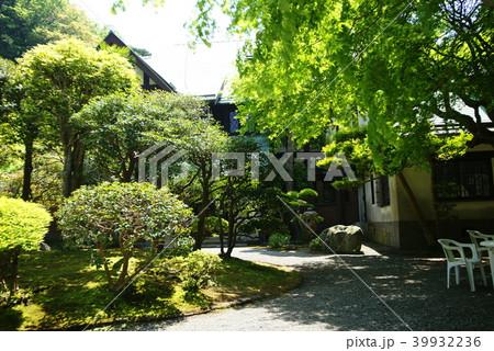 鎌倉 旧華頂宮邸 邸園 39932236