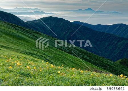 ニッコウキスゲ咲く飯豊連峰縦走路と磐梯山方面の山並み 39933661