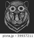 怒っている 怒り 獣のイラスト 39937211
