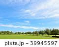 青空 夏 公園の写真 39945597