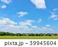 青空 夏 公園の写真 39945604