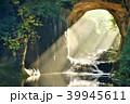 千葉県 濃溝の滝 朝の光 39945611