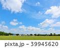 青空 夏 公園の写真 39945620