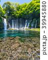 《静岡県》白糸の滝・清流 39945880