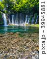 《静岡県》白糸の滝・清流 39945881