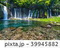 《静岡県》白糸の滝・清流 39945882