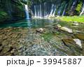 《静岡県》白糸の滝・清流 39945887