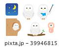 フクロウ 39946815