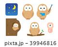 フクロウ 39946816
