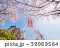 ソメイヨシノ 鉄塔 春の写真 39969584
