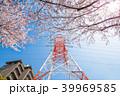 ソメイヨシノ 鉄塔 春の写真 39969585