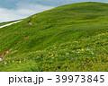 飯豊連峰 ニッコウキスゲ 御西岳の写真 39973845