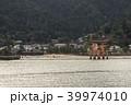 厳島神社 鳥居 宮島の写真 39974010